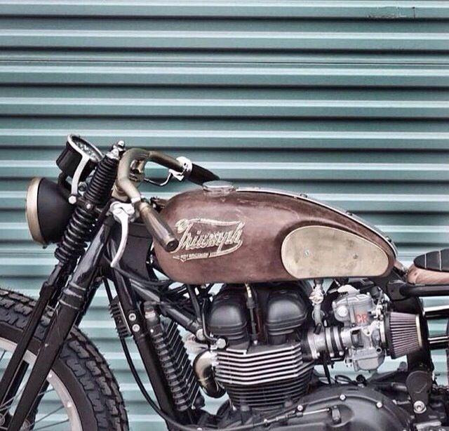 (Triumph) motorcycles, rider, ride, bike, bikes, speed, cafe racer, cafe racers, open road, motorbikes, motorbike, cycles, cycle, standard, sport, standard naked, hogs, hog #motorcycles