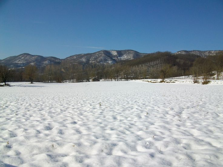 Fields, Borghetto Borbera (AL)