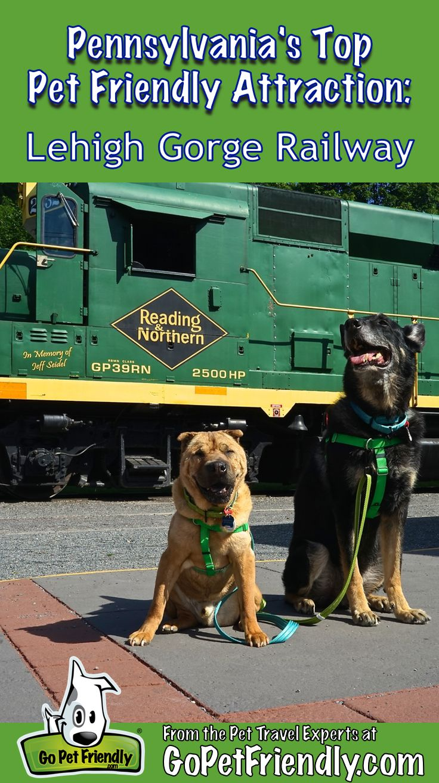 Pennsylvaniau0027s Top Pet Friendly Attraction Lehigh Gorge