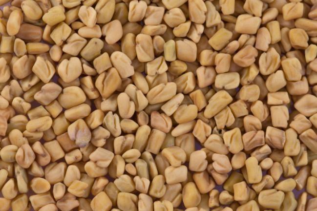 El fenogreco es una hierba medicinal de origen mediterráneo muy usada terapéuticamente para la pérdida de peso, control de la diabetes y prevención de la caída del cabello. Se utilizan sus hojas y sus semillas tanto internamente como en cataplasmas exernos, y también es muy u