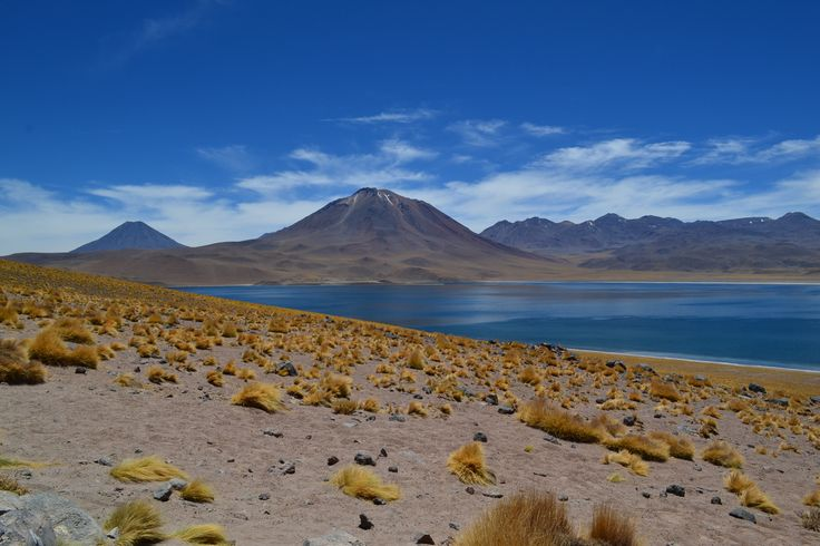 Laguna Miscanti, San Pedro de Atacama, melhores dicas de viagem, dicas de turismo