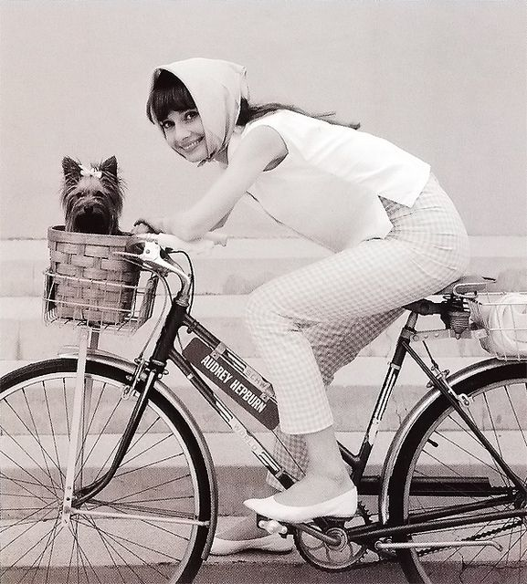 Audrey Hepburn on the set of My Fair Lady with her dog Assam of Assam. 1963.