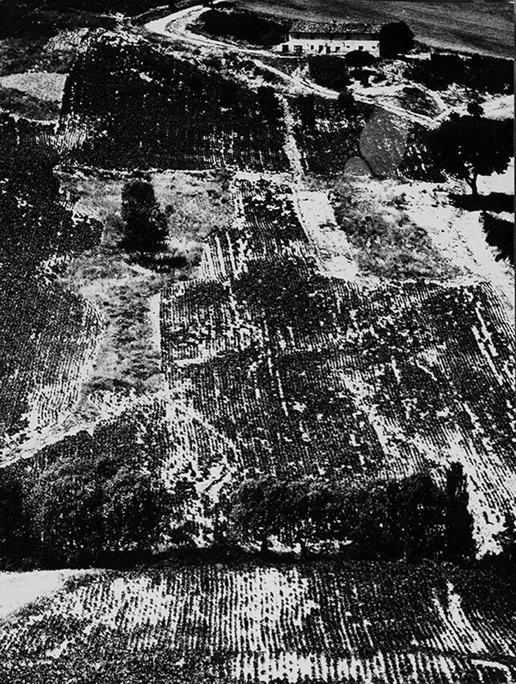 Metamorphosis of the earth (Landscapes) (1955-76) – Archivio Mario Giacomelli