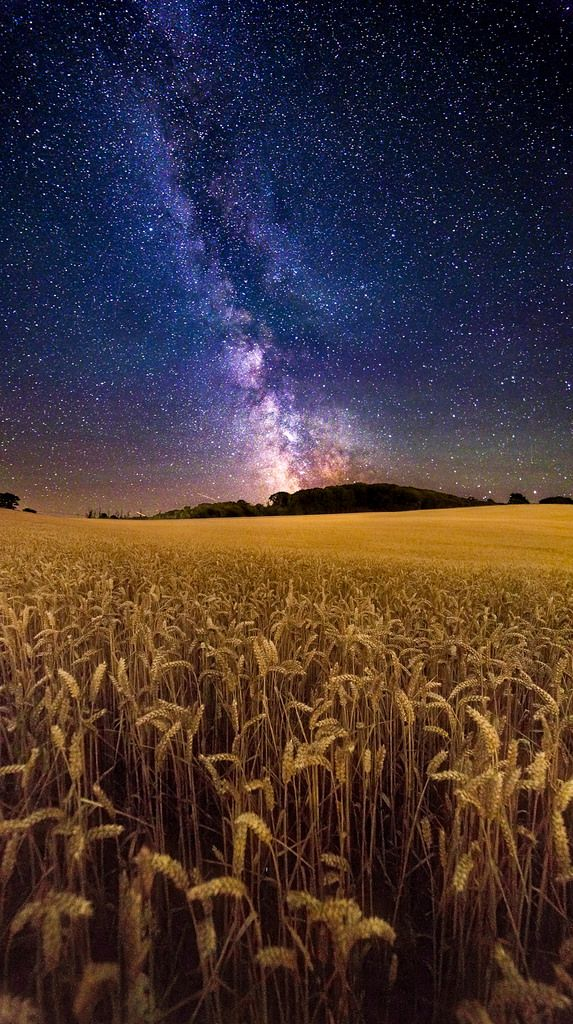~~Fields of Gold | milky way astrophotography by Chad Powell Design and Photography~~