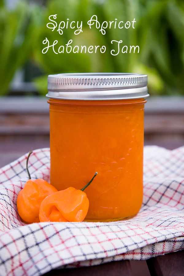 Recipe for Spicy Apricot Habanero Jam. Pairs deliciously with a soft camembert cheese (my fav!) or any cheese really :)