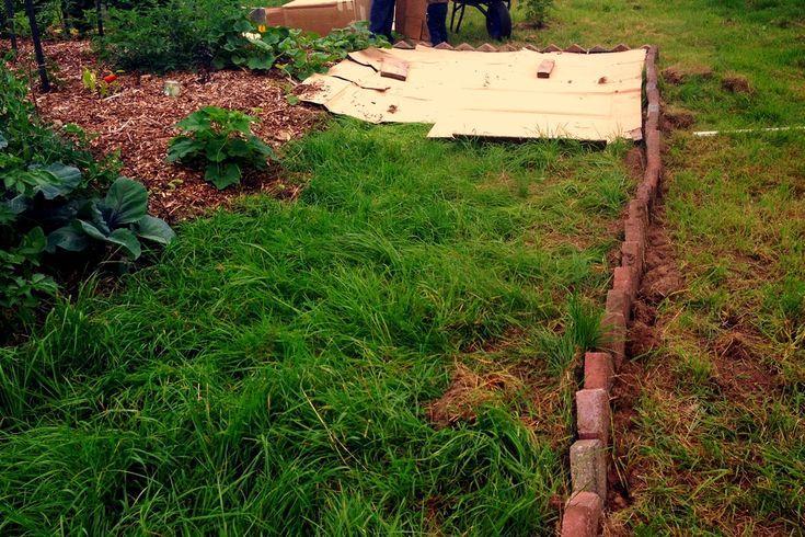 41 best Garten images on Pinterest Yard ideas, Backyard ideas and - gartenplanung beispiele kostenlos