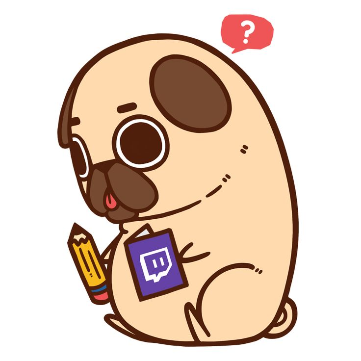 17 Best Images About Puglie On Pinterest Love You All Pizza And Pug