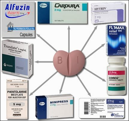 What are the alpha-blockers and the 5-alpha reductase inhibitors? Alpha-blockers are a category of medicines used for the remedy of BPH. Alpha receptors are positioned inside the bladder and the prostate and so they modulate tone.   Read more: http://tipsdiscover.com/health/what-are-the-alpha-blockers-and-the-5-alpha-reductase-inhibitors/#ixzz3XmsY5po0