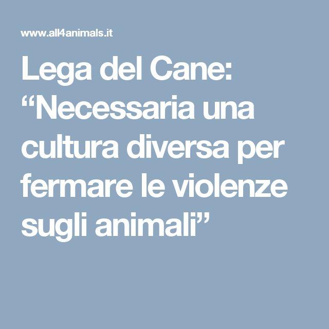 """Lega del Cane: """"Necessaria una cultura diversa per fermare le violenze sugli animali"""""""