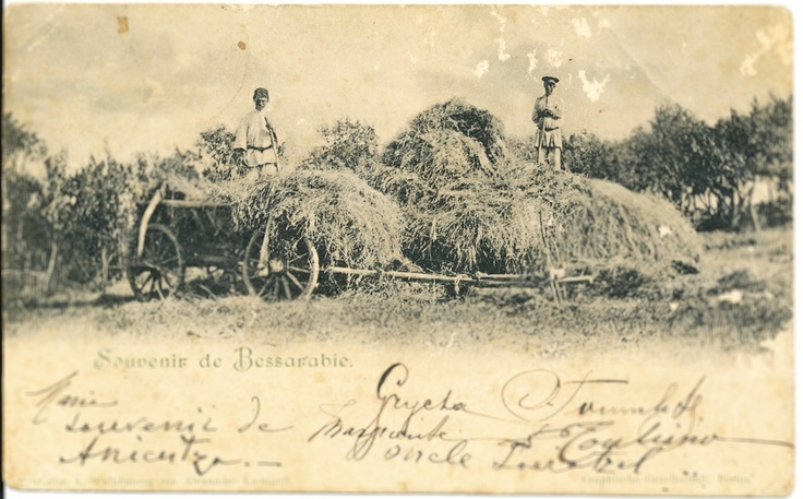 Peasants collecting Straw, around 1900, Moldova