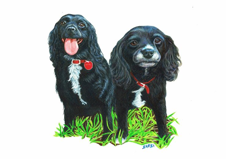 """""""Henry and Polly"""" Acrylic on watercolour paper www.furryfaces.co.nz"""