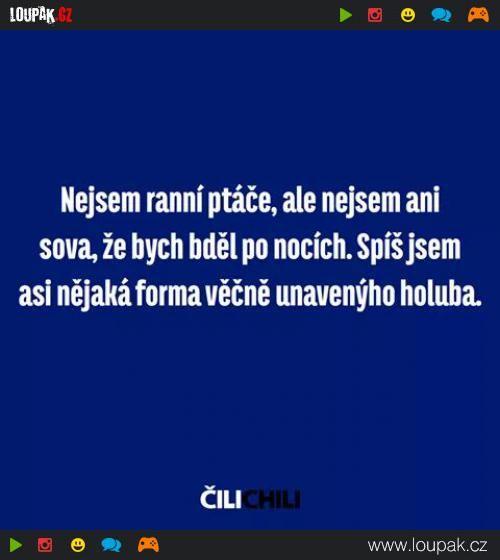 Holub