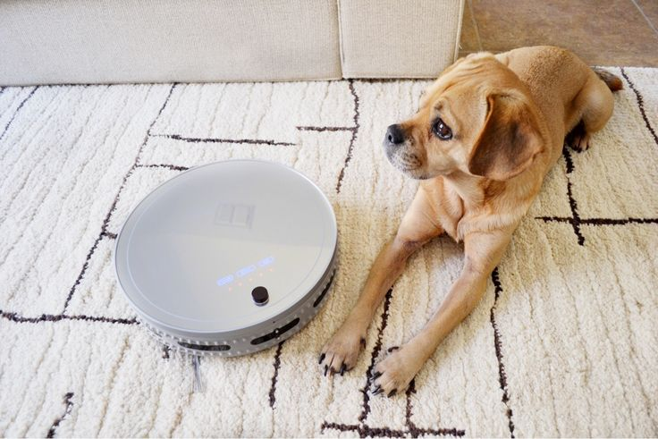 """About a month ago my friends at bObsweep sent me their bObi Pet to try out and review. My first thought was """"Heck yes!"""" At 30 something weeks pregnant the idea of a robot vacuum made my heart jump for joy. It was painful waiting for it to charge when it arrived. I wanted to […]"""