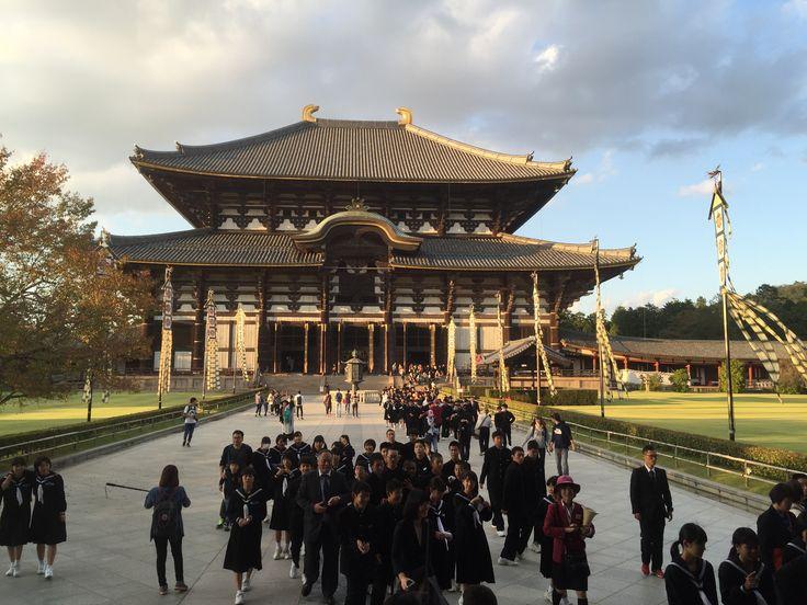 Todai-ji Temple, Nara Park - School children emerge out