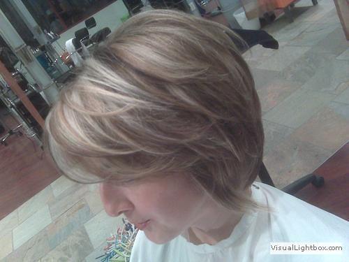 10 best Lowlights foe grey hair images on Pinterest | Grey hair ...