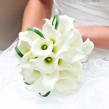 Graceful Mini Calla Lilies Wedding Collection