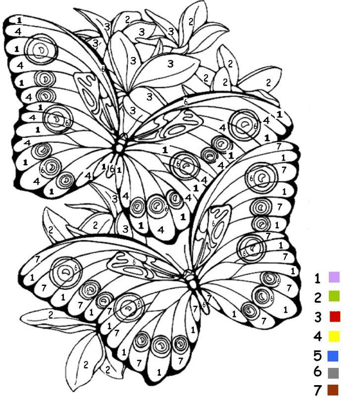 coloriage coloriage magique papillon