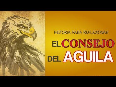 Historia Para Reflexionar El Consejo Del Aguila (New)- Una Reflexion Para Los Padres - Frases para mujeres