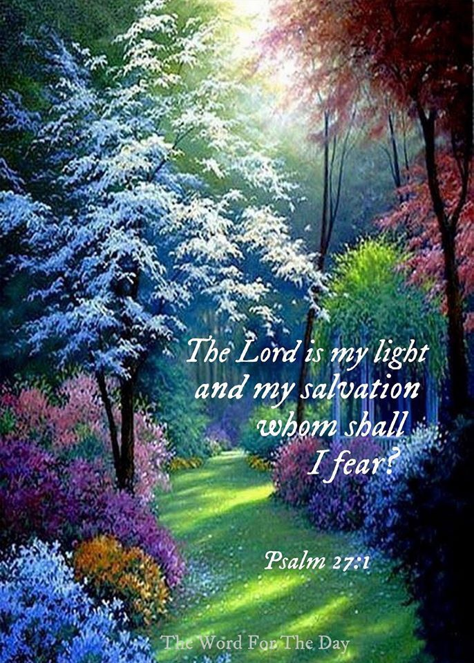 The Lord is my light and my salvation who shall I fear? Pslam 27:1