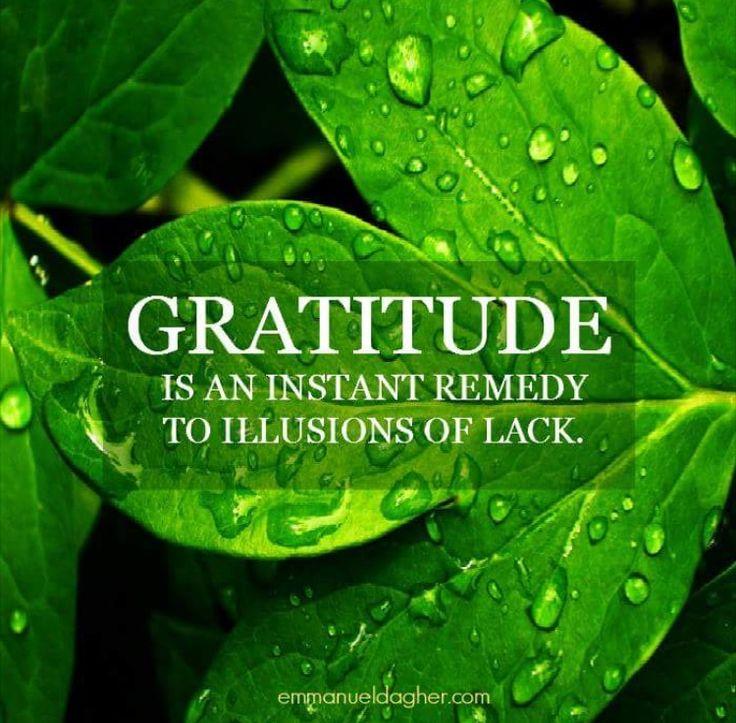 a5bd132f577ea828059afc5b7cf9e37a--gratitude-quotes-illusions.jpg