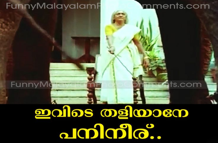 philomena godfather malayalam comedy photo comment