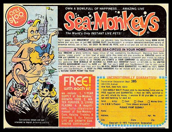 Sea Monkey S Vintage 1971 Comic Book Ad 11 X 14 Poster Print
