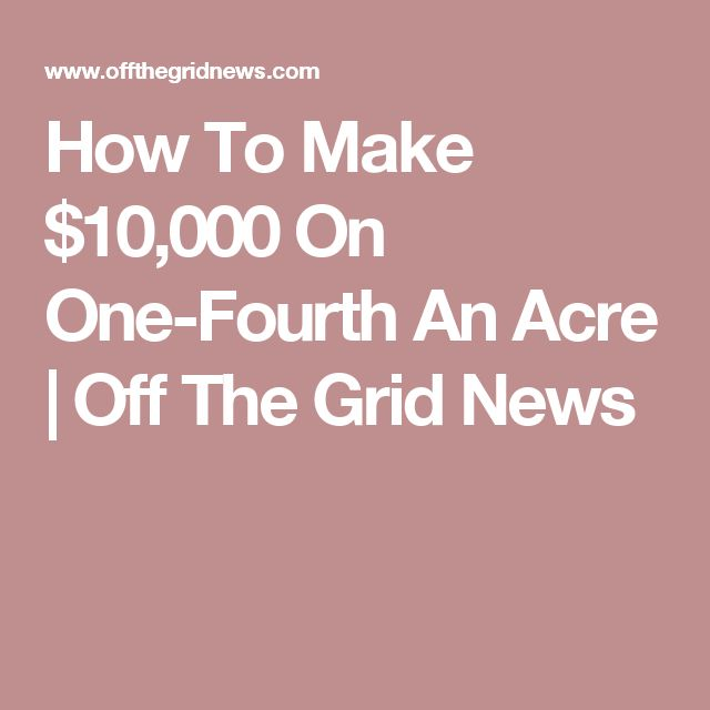 How To Make $10,000 On One-Fourth An Acre  | Off The Grid News
