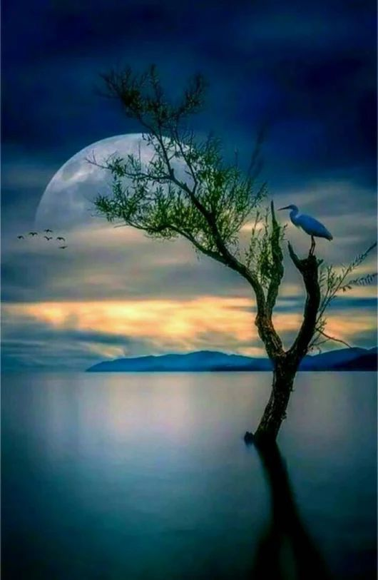 Blue Heron, unbelievable moon, what a great piece of art, but who's?