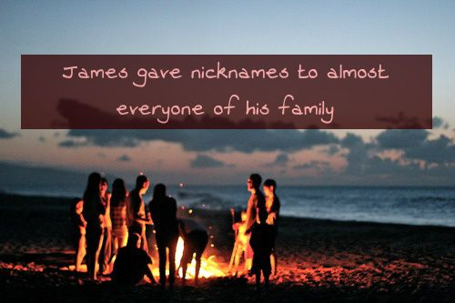 James gave nicknames to almost everyone of his family. Albus was Al, Lily was Lils, Victoire was Vicky (she hated the nickname), Dominique was Domi, Roxanne was Roxy, Scorpius was Scorp, Andromeda was Andy, Louis was Lou and Lysander was Lys. James...