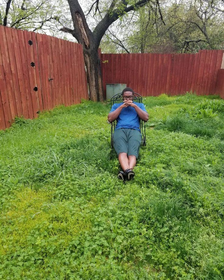Back yard oasis in 2020 Backyard, Backyard oasis, Lawn
