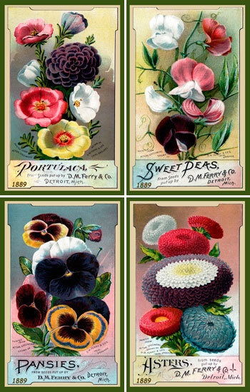 Olde America Antiques | Quilt Blocks | National Parks | Bozeman Montana : Flowers - Flowers Set 10 DM Ferry