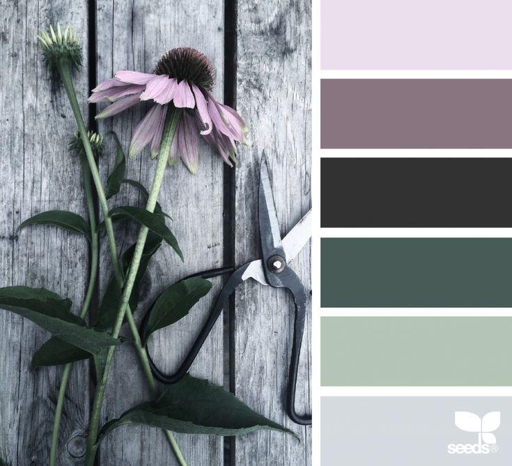 { flora tones } image via: @diana_lovring