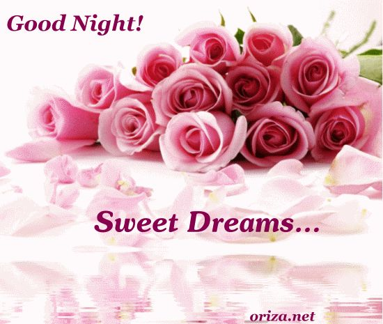 Good Night Flowers   Responses To U201cGood Night! Sweet Dreams!u201d