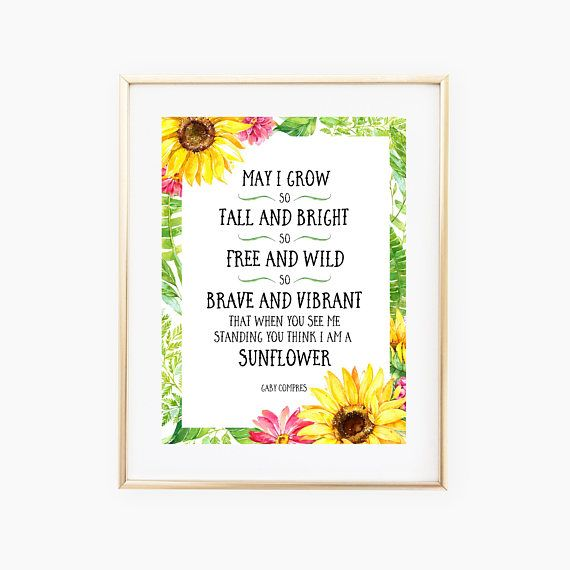 I Love You More Than Quotes: 25+ Best Sunflower Quotes On Pinterest