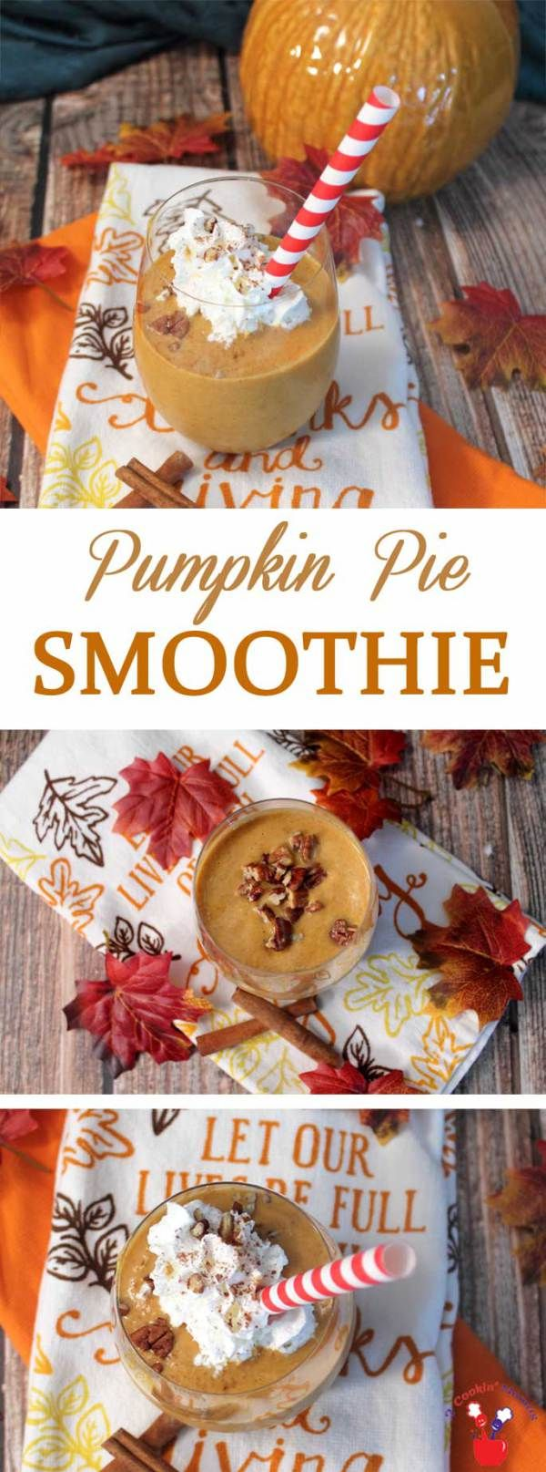 Pumpkin Pie Smoothie main | 2 Cookin Mamas Our Pumpkin Pie Smoothie is super healthy and packed with protein & plenty of fiber. It's like having a slice of pumpkin pie in a glass. #recipe #breakfast