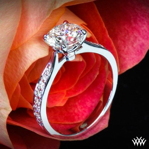 Diamonds diamonds diamonds chelseeparkerBling, Legato Sleek, Girls, Dreams, Diamonds Diamonds, Jewelry, Things, Pave Engagement, Engagement Rings