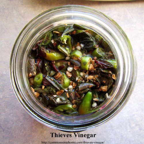 Ladri Aceto - rimedio a base di erbe, storicamente utilizzato per combattere la peste, queste ricette utilizzare erbe antivirali e antibatteriche per aumentare l'immunità e combattere i germi