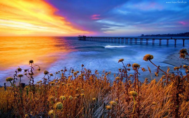 Molo, Morze, Zachód Słońca