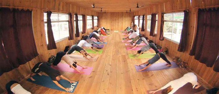 200-Hour Yoga Teacher Training Rishikesh, India  Check regenseizoen en holi