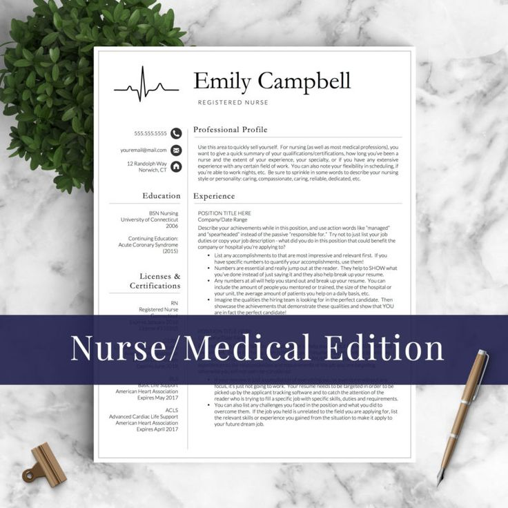 Nurse Resume Template / RN Resume