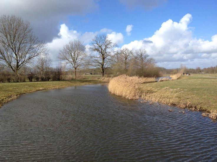 Schellerlanden. Aan de rand van Zwolle. Foto. Siep van der Veen
