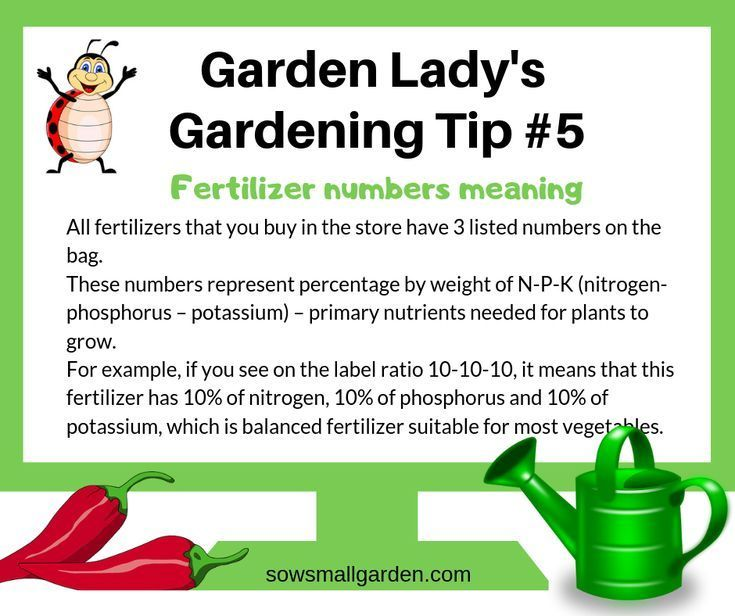 Gardening Tip On Fertilizer Number Meaning Click Through To Learn More Tips And Ways To Fertilize Garden So Gardening Tips Gardening For Beginners Garden Soil
