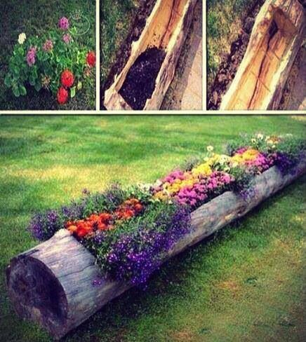 Tree Flower Bed : Old tree flower bed  For the Home-Around the HOuse  Pinterest