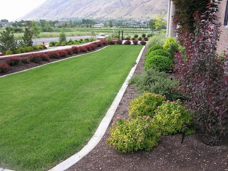 Along Fence Line On To The Yard Pinterest Beautiful Shrubs And Backyards