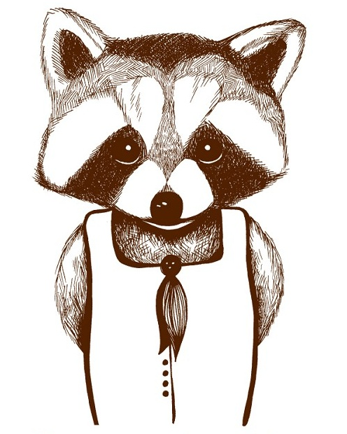 Raccoon Illustration - by PeppermintSticks on madeit