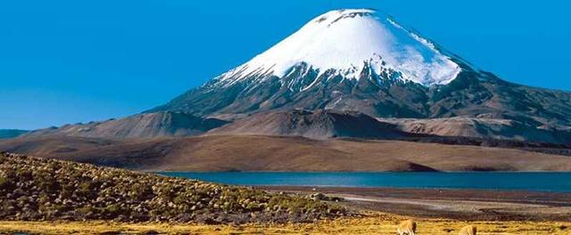 Avanza el Diesierto Chileno