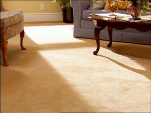 Our staff of experienced Carpet Cleaners has been keeping Texas clean since 1957. Our carpet cleaning service area includes San Antonio and a 30 mile radius around San Antonio TX.