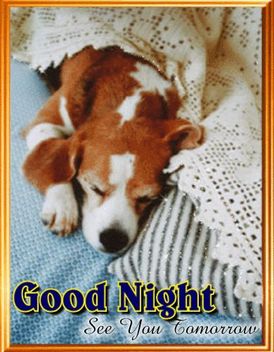 #Whatsapp a cute #goodnight message to someone you #love with this #ecard.