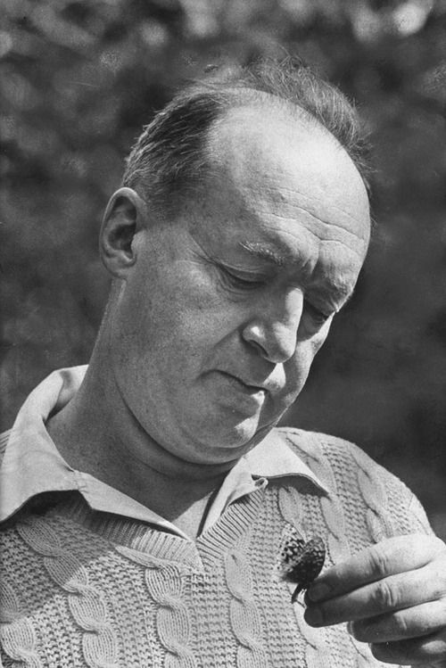 Vladimir Nabokov by Carl Mydans—Time & Life Pictures/Getty Images
