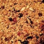 Chewy Oat, Nut, Fruit & Seed Flap Jacks